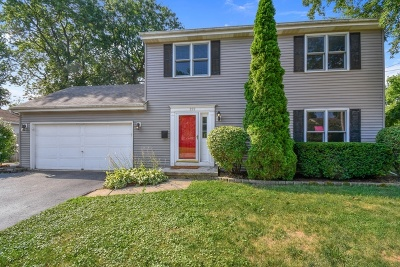 Batavia Single Family Home For Sale: 222 Lathem Street