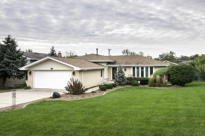 Palos Hills Single Family Home For Sale: 8809 West 98th Place