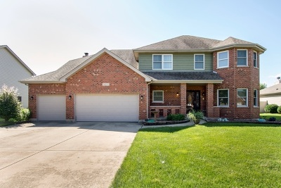 Plainfield Single Family Home For Sale: 24233 Simo Drive