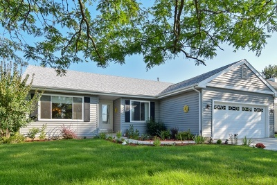 Carol Stream Single Family Home For Sale: 699 Windemere Lane