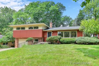 Glen Ellyn Single Family Home For Sale: 280 Scott Avenue