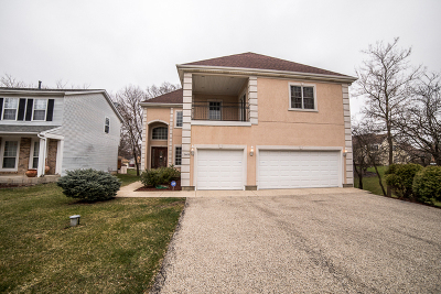 Lake Zurich Single Family Home For Sale: 23445 North Valley Road