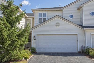 Romeoville Condo/Townhouse For Sale: 205 Key Largo Drive #205