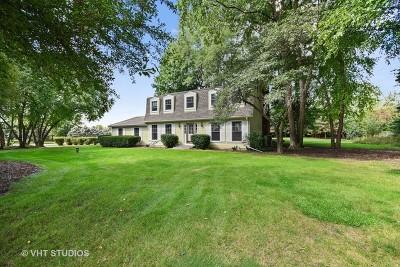 Elgin Single Family Home For Sale: 8n840 Hopps Road
