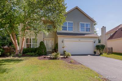 Romeoville Single Family Home For Sale: 135 Fairfield Drive