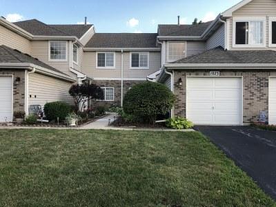 Darien Condo/Townhouse For Sale: 1023 Ripple Rdg Drive