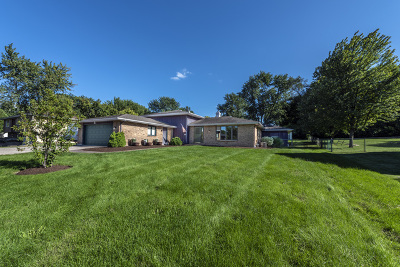Batavia Single Family Home For Sale: 1250 East Wilson Street