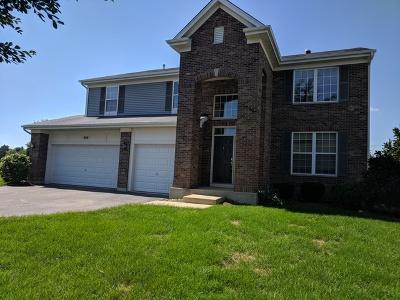 Single Family Home For Sale: 940 Leeward Lane