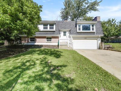 Carpentersville Single Family Home For Sale: 906 Rosewood Drive