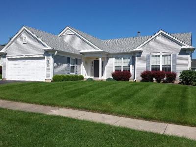 Huntley Single Family Home For Sale: 13568 Dakota Fields Drive