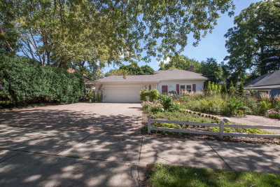 Lombard Single Family Home For Sale: 219 South Elizabeth Street