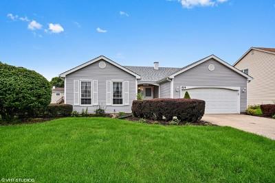 Bartlett IL Single Family Home Contingent: $234,000