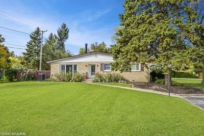 Palatine Single Family Home For Sale: 1395 East Palatine Road