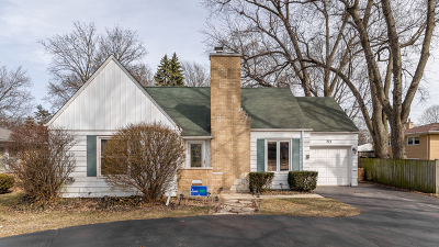 Mount Prospect Single Family Home For Sale: 713 South Elmhurst Road