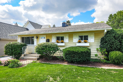 Downers Grove Single Family Home For Sale: 5428 Benton Avenue