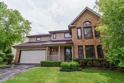 Buffalo Grove Single Family Home For Sale: 535 Newtown Drive
