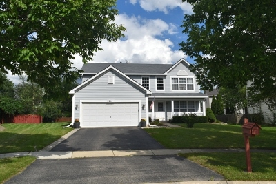 Romeoville Single Family Home For Sale: 211 Troy Court