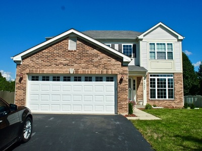 Bolingbrook Single Family Home For Sale: 1721 Trails End Lane