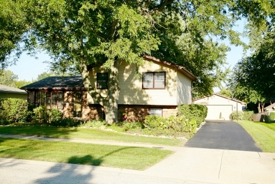 South Elgin Single Family Home For Sale: 685 Renee Drive