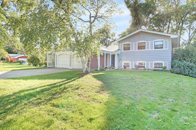 Lombard Single Family Home For Sale: 2s154 Avondale Lane