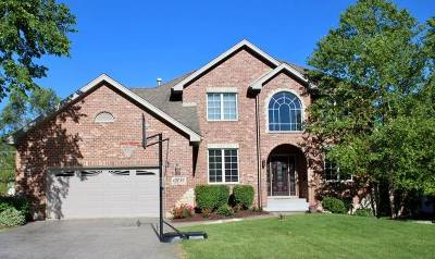 Orland Park Single Family Home For Sale
