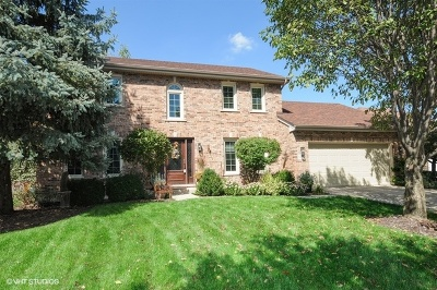 Naperville Single Family Home For Sale: 5052 Switch Grass Lane