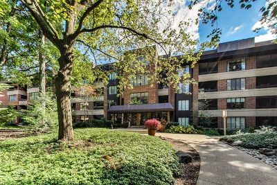 Hinsdale Condo/Townhouse For Sale: 1401 Burr Oak Road #317B