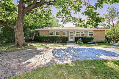 Wilmette Single Family Home For Sale: 229 Westmoreland Drive