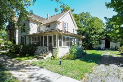 Naperville Single Family Home For Sale: 16 South Eagle Street