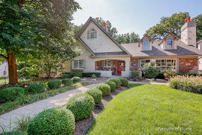 Naperville Single Family Home For Sale: 341 South Sleight Street