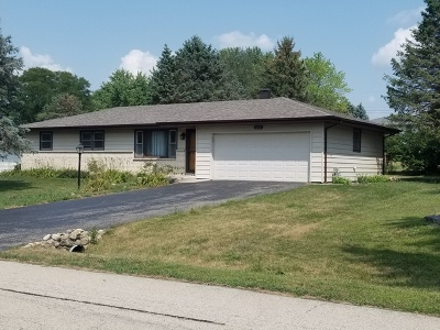 Minooka, Channahon Single Family Home For Sale: 22401 South Deal Avenue