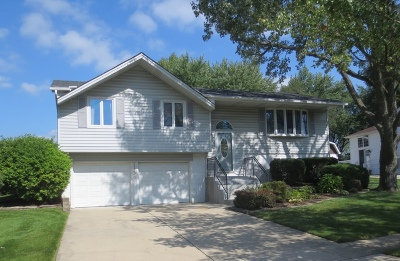 Schaumburg Single Family Home Re-Activated: 1136 Bradford Lane