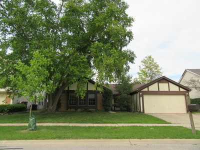 Buffalo Grove Single Family Home For Sale: 38 East Fox Hill Drive