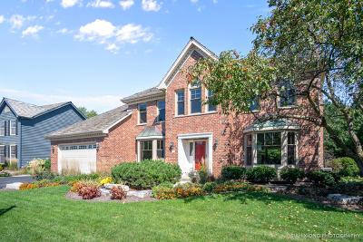 Wheaton Single Family Home For Sale: 9 Danada Drive