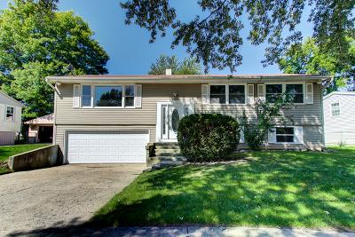 Carpentersville Single Family Home For Sale: 6022 Hampton Drive