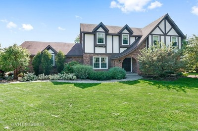 Glen Ellyn Single Family Home For Sale: 717 Glenbard Road