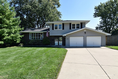 Bartlett IL Single Family Home For Sale: $284,900