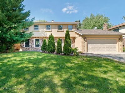Downers Grove Single Family Home New: 1250 Oak Hill Road