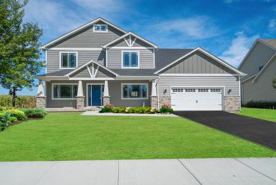 Plainfield Single Family Home For Sale: 25144 Fieldbrook Drive