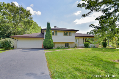 Downers Grove Single Family Home For Sale: 8645 Brookridge Road