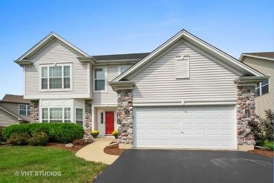 Bartlett IL Single Family Home New: $309,000