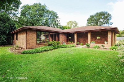 McHenry Single Family Home For Sale: 813 Area Street
