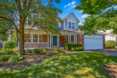 Grayslake Single Family Home For Sale: 18380 West Springwood Drive