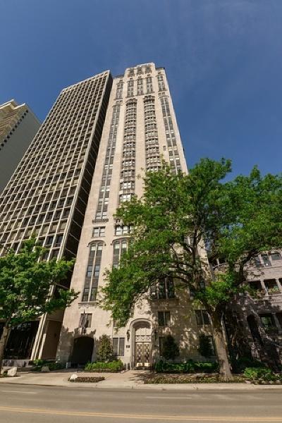 Chicago Condo/Townhouse For Sale: 1242 North Lake Shore Drive #5S