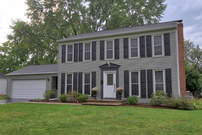Roselle Single Family Home For Sale: 382 Hillside Drive