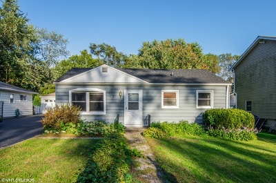 Crystal Lake Single Family Home For Sale: 145 North Greenfield Avenue