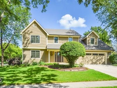 Downers Grove Single Family Home For Sale: 1440 Acorn Avenue