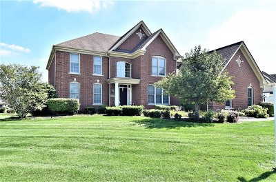 St. Charles Single Family Home For Sale: 4226 Meadow View Drive