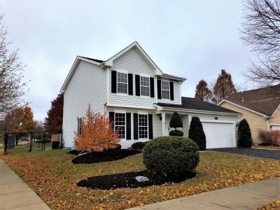 Naperville Single Family Home For Sale: 1135 Selma Lane