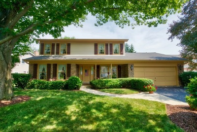 Wheaton Single Family Home For Sale: 1551 Orth Court
